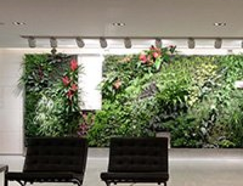 Using Biophilic Design Principles Inside Healthcare Spaces